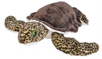 Grön Havssköldpadda, 30cm