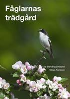Fåglarnas trädgård