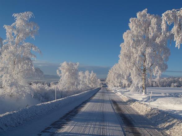Vinterbilde langs Kisevegen