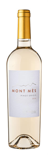 Pinot Grigio Mont Mès Vigneti delle Dolomiti IGT -19