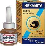 Hexamita