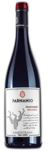 Parnanio Salento IGT Negroamaro -18