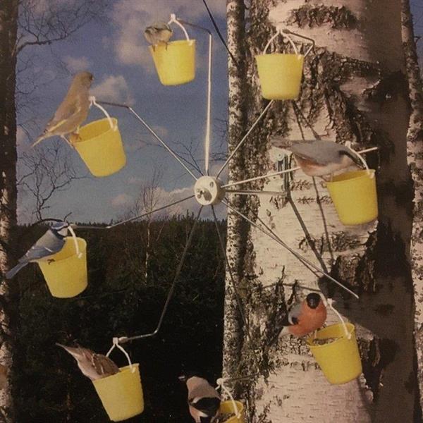 Pariserhjul för fåglar
