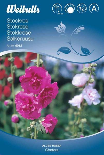 Stockros