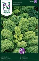 Kål Grön- 'Half Tall'