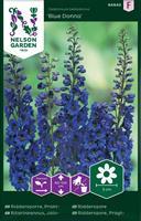 Riddarsporre Trädgårds- Prakt- 'Blue Don'