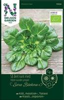 Kål Asiatisk Tatsoi Organic