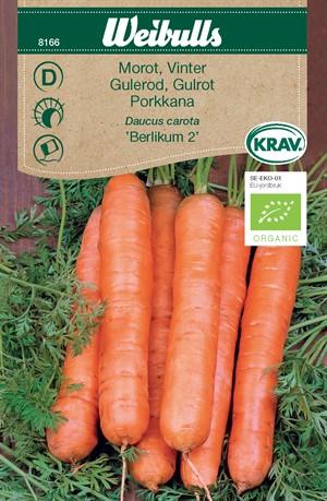 Morot Vinter- 'Berlikum 2' KRAV Organic