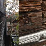 Bild 1. Till vänster den berörda timmerväggen innan panel, sedd i dess längdriktning. Till höger detaljbild av timmerväggen.