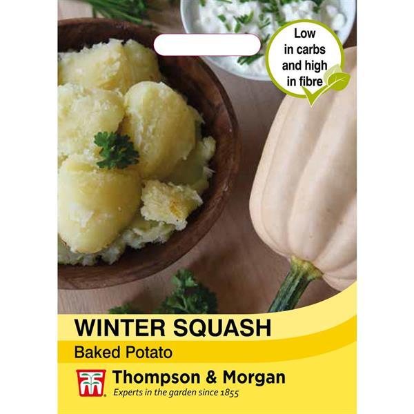 Squash Vinter- 'Baked Potato'