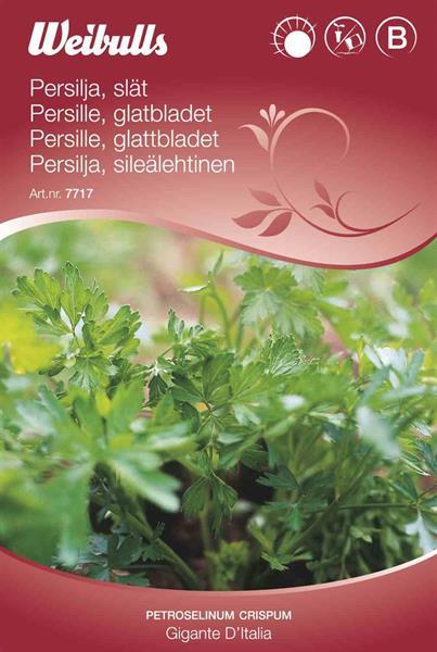 Persilja Slätbladig