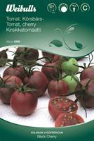 Tomat Körsbärs- 'Black Cherry'