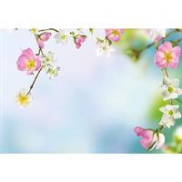 Oasis Kort hanging wild flowers