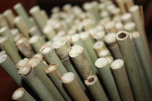 Pinnar Bambu olika storlekar