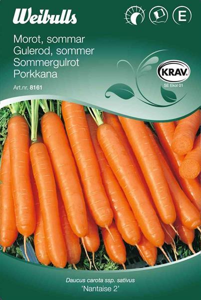Morot Sommar- 'Nantaise 2' Krav Organic