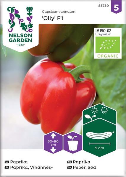 Paprika 'Olly' F1 röd Organic