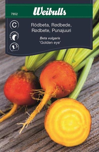 Rödbeta 'Golden Eye' gul