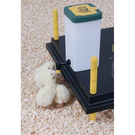 Vattenbehållare till kycklingar