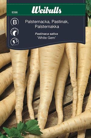 Palsternacka 'White Gem'