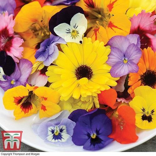 Ätbara Blommor Mix