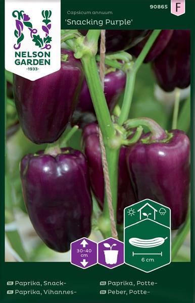 Paprika Snack- 'Snacking Purple'