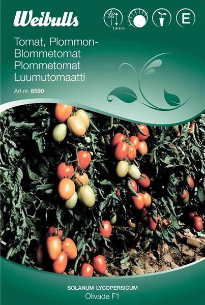 Tomat Plommon- 'Olivade F1'