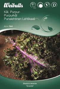 Kål Grön- Purpur- 'Scarlet'