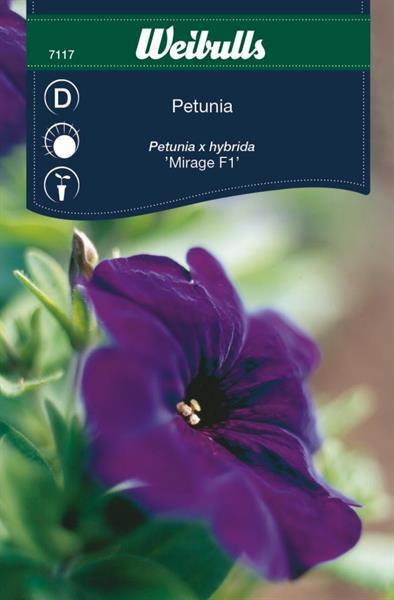 Petunia mirage f1