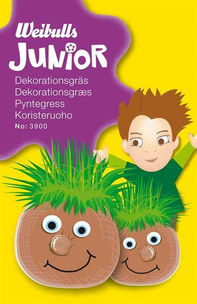 Junior dekorationsgräs