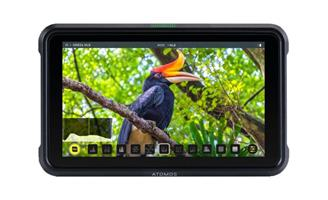 Atomos Shinobi HDMI 5'' Monitor