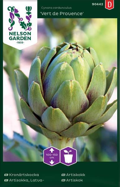 Kronärtskocka 'Vert de Provence'
