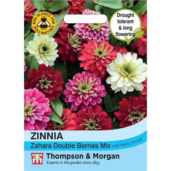 Zinnia Maryland- 'Zahara Double Berries' Mix