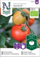 Tomat 'Ace 55 VF' växthus Organic