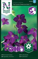 Blomstertobak Perfume Deep Purple