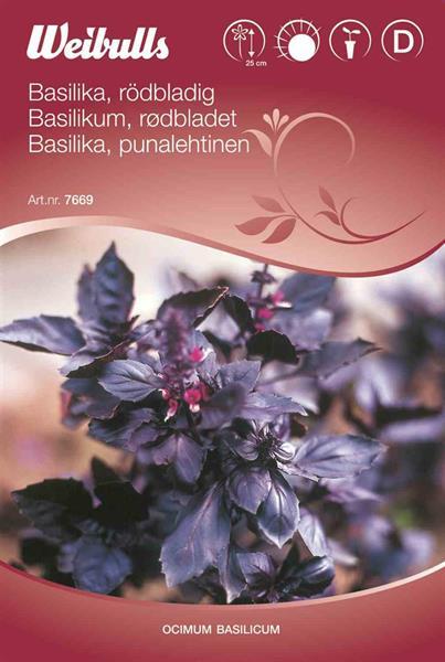Basilika rödbladig