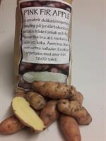 Potatis TVÄTTTAD pink fir apple 1kg