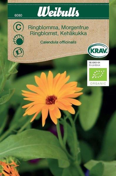 Ringblomma Krav Organic