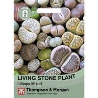 Levande stenar