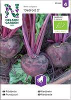 Rödbeta Detroit 2, rund, Organic