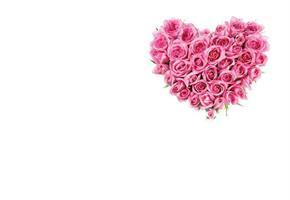 Oasis Kort Pink Rose Heart