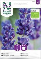 Lavendel organic