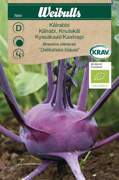 Kålrabbi 'Delikatess Blauer' KRAV Organic