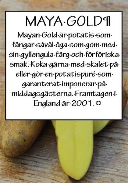 Potatis TVÄTTAD Maya Gold 1kg
