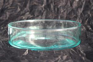 Glasskål cylinder D20cm H5cm 4/fp