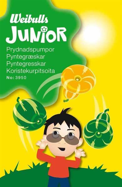 Junior prydnadspumpor