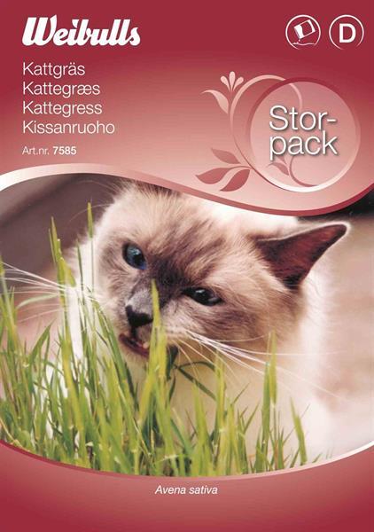 Gräs Katt- storport
