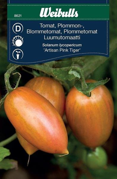 Tomat Plommon- 'Artisan Pink Tiger'