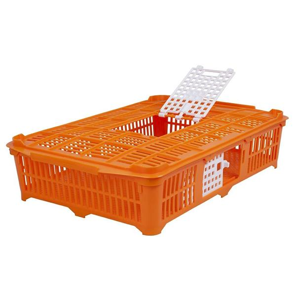 Transportlåda för duvor/vaktlar
