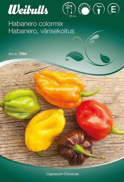 Chilipeppar 'Habanero Colormix'