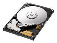 Hårddisk 500GB 2,5
